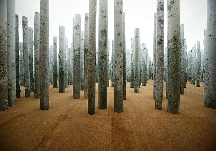 Source Figure1 (Installation) - Abbas Kiarostami