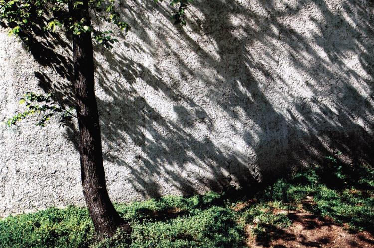 The wall #19, 2010 - Аббас Кіаростамі