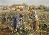 In the Vineyard - Elin Danielson-Gambogi