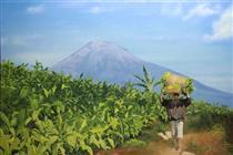 Tobacco Gardens on the Sindoro Mountain Slope ( Kebun Tembakau di Lereng Gunung Sindoro ) - Mas'ud Dalhar