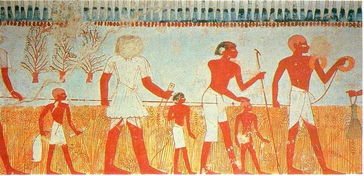 Measuring and Recording the Harvest, c.1422 - c.1411 BC - Ancient Egyptian Painting