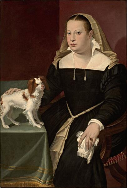 Portrait of a Lady with a Dog, c.1565 - c.1569 - Бартоломео Пассаротти