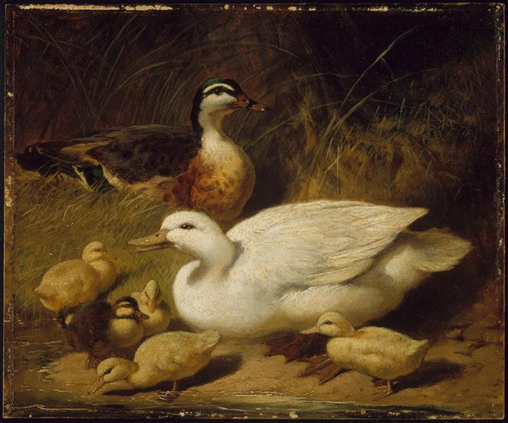 Ducks and Ducklings, 1850 - John Frederick Herring Sr.