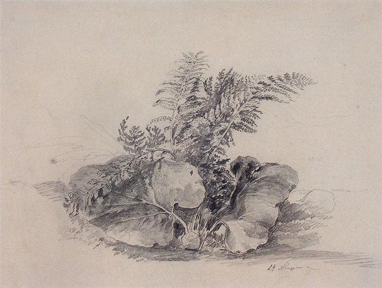 Fern leaves and burdock, 1854 - Aleksey Savrasov