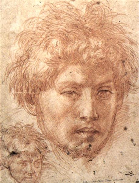 Head of a Young Man, 1520 - Andrea del Sarto