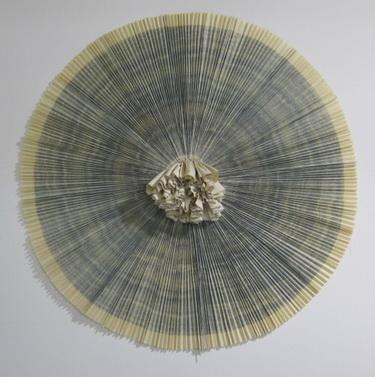 ciliary #11 - Ann Hamilton
