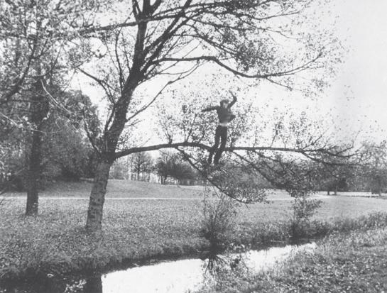 Broken Fall (Organic), 1971 - Bas Jan Ader