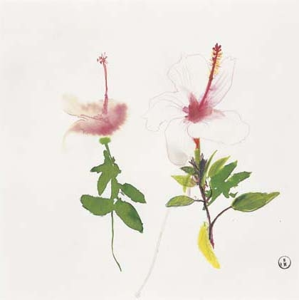 Hibiscus, 1987 - Brett Whiteley