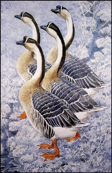 Chinese Geese - Чарльз Таннікліфф