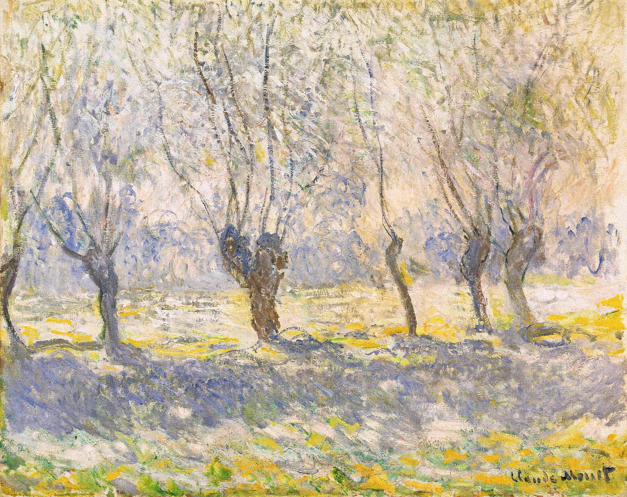 Claude Monet Kanvas Tablo Burada - Baskıloji || Online Baskı Merkez, Online  Kanvas Tablo, Fotoğraf, Şeffaf Film, Poster Baskıları