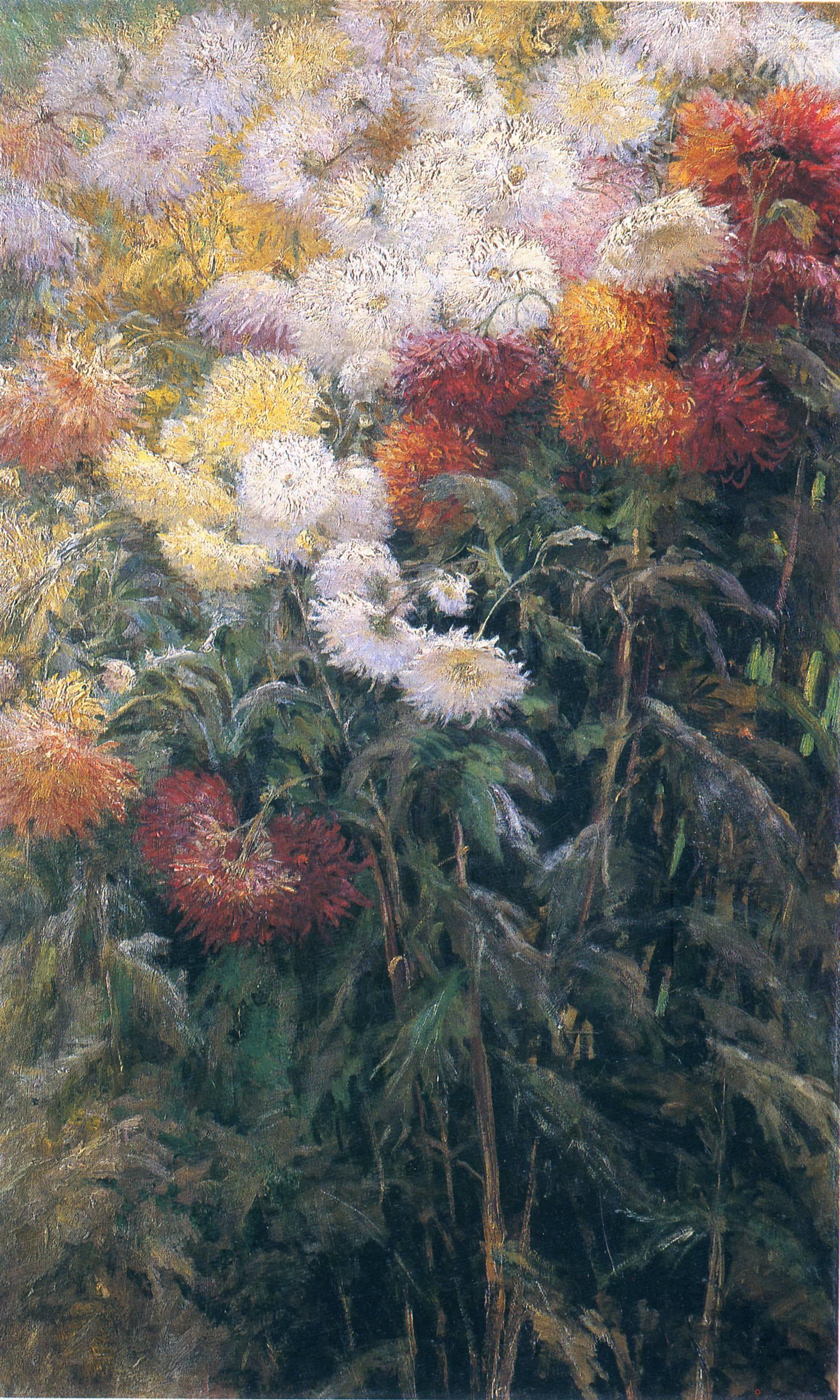 Clump of Chrysanthemums, Garden at Petit Gennevilliers, 1890