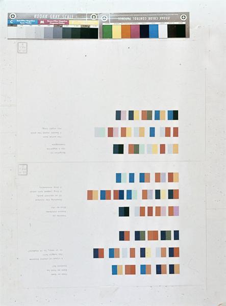Kodak Gray Scale - Ion Bitzan