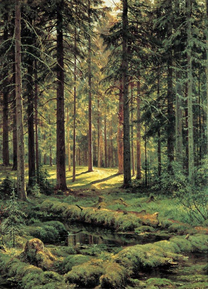 Coniferous Forest Sunny Day 1895 Ivan Shishkin