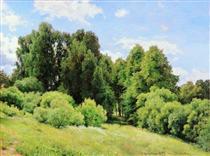 Forest Glade (Glade) - Ivan Shishkin