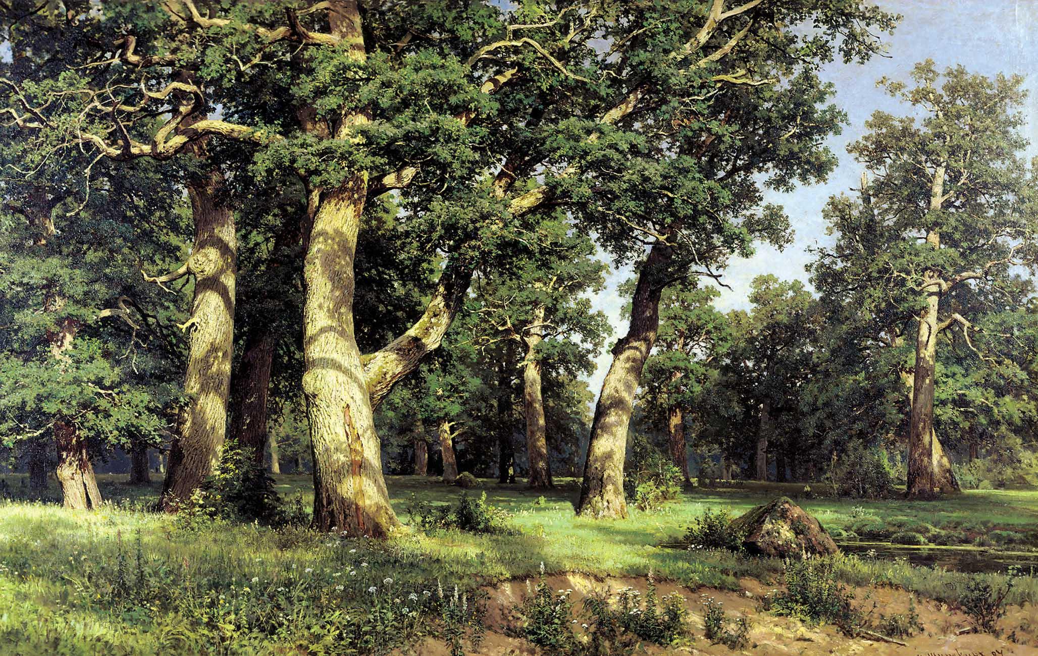 Картинки по запросу Иван Шишкин «В лесной глуши»