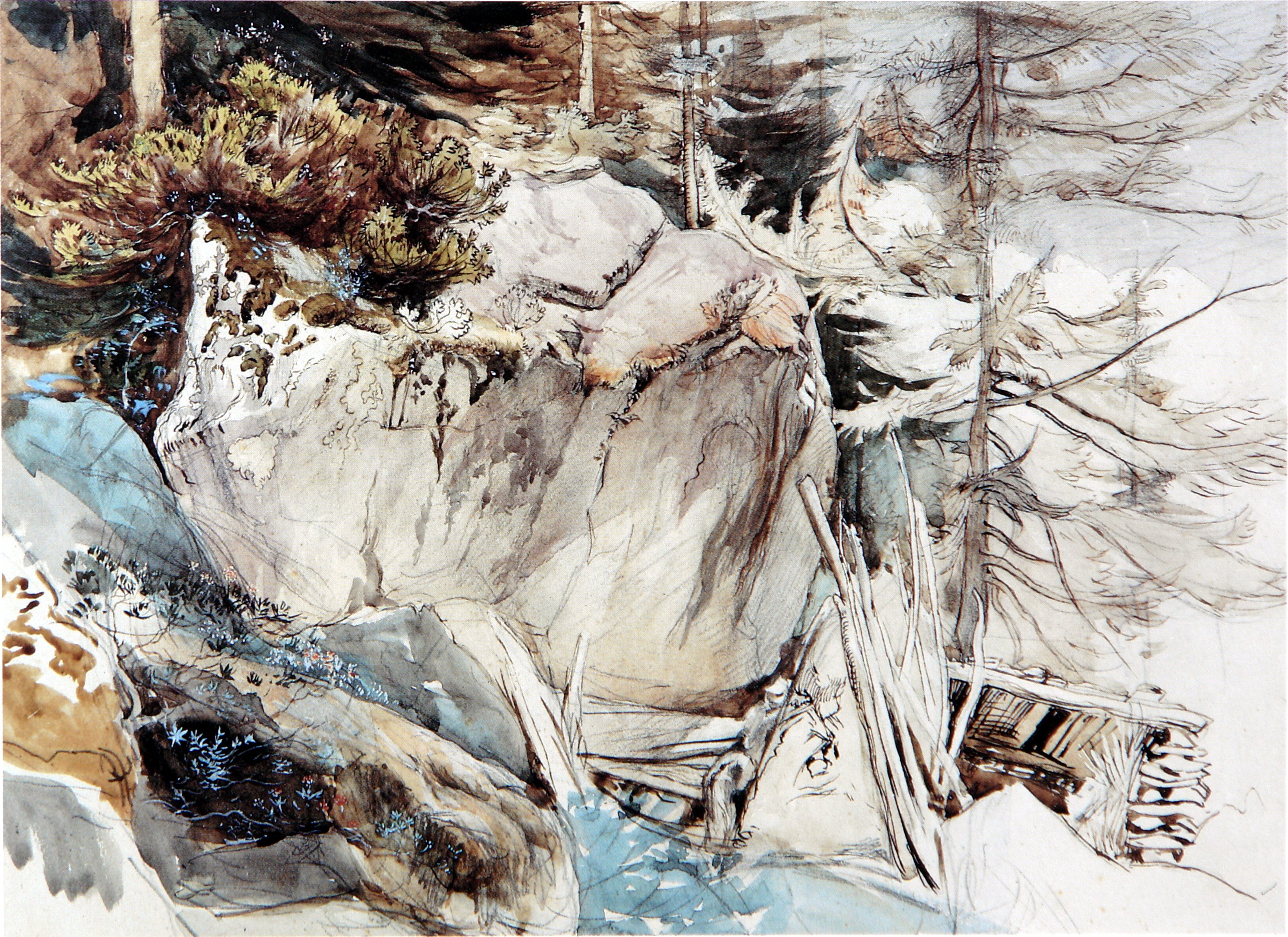 https://uploads7.wikiart.org/images/john-ruskin/mountain-rock-and-alpine-rose-1845.jpg