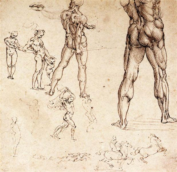 Anatomical studies, c.1505 - Leonardo da Vinci