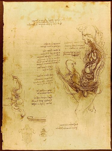 Coition of a Hemisected Man and Woman - Leonardo da Vinci