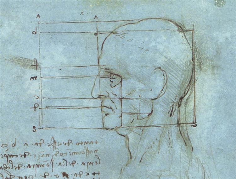 The proportions of the head, c.1490 - Leonardo da Vinci