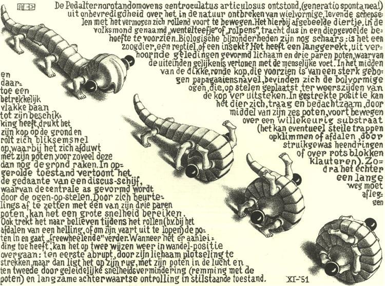 Curl Up, 1951 - M.C. Escher