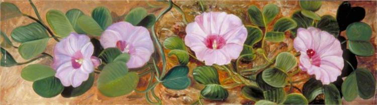 A Sand-Binding Plant of Tropical Shores - Marianne North