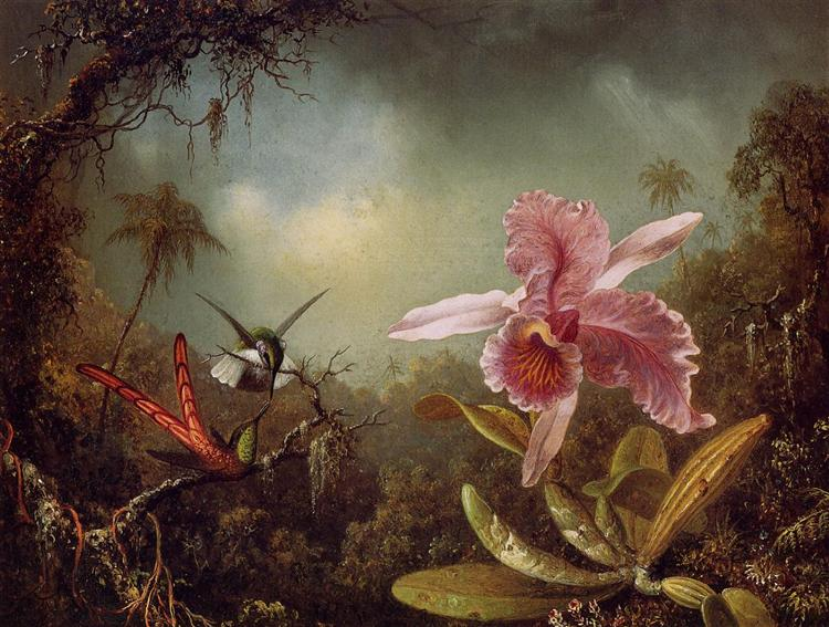 Orchid with Two Hummingbirds, 1871 - Martin Johnson Heade