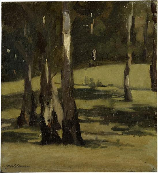 Shadows, landscape with trees, 1925 - Max Meldrum