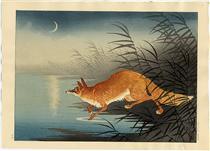 Fox in the reeds - Ohara Koson