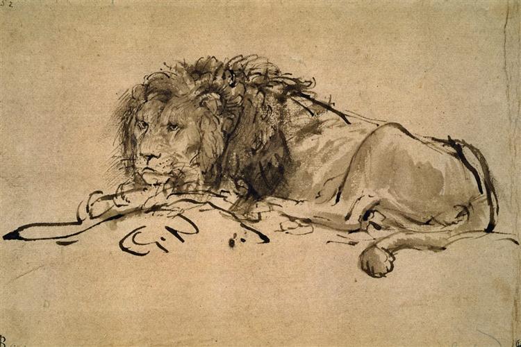 Lion Resting, 1650 - 1652 - Rembrandt