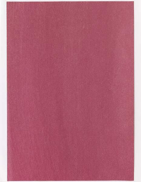 Color sample for painting (#02'27), 2004 - Rudolf de Crignis