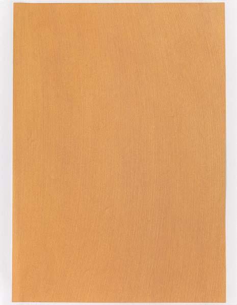 Color sample for painting (#03'04), 2004 - Rudolf de Crignis