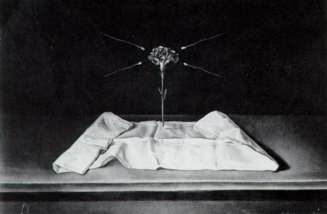 Mystical Carnation, 1950-1951