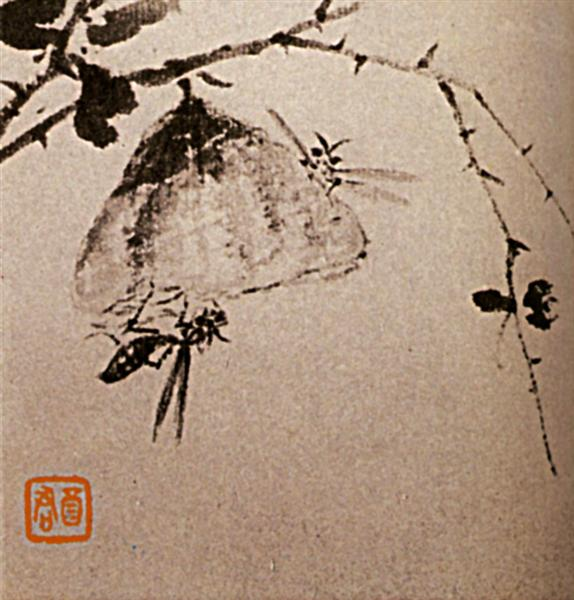 Studies of insects, wasps, 1656 - 1707 - Shi Tao