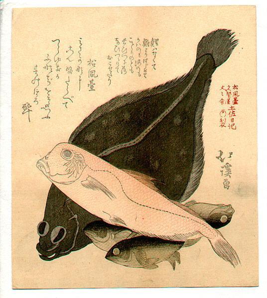 Fish - Toyota Hokkei