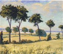 Trees near Breccles - Winston Churchill